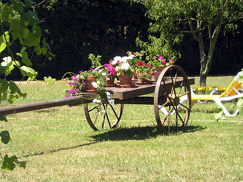 Carro en el jardín